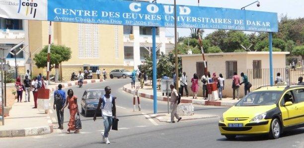 [Reportage] Au Sénégal, la problématique des chômeurs diplômés