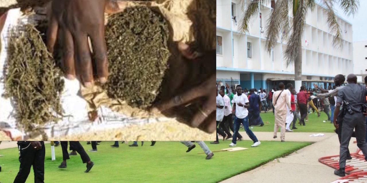 Ucad: Arrestation de deux étudiants pour trafic de drogue